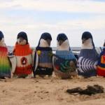 Strickpullover für Pinguine lassen Hipster-Herzen höher schlagen