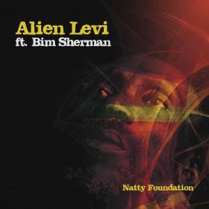 Alien Levi / Natty Foundation / Artwork by Christina Herdman